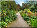 SJ7387 : Dunham Massey Garden in Autumn by David Dixon