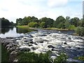 NT5434 : Weir on the River Tweed  by Graham Hogg