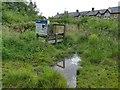 SE1842 : Bog garden and dipping pond, Parkinson's Park, Guiseley by Stephen Craven