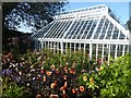 NX6851 : Greenhouse in Broughton House Garden by Oliver Dixon
