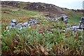 NC1526 : Farmstead and byre-house, Little Assynt by Jim Barton