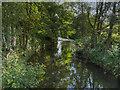 SD9625 : River Calder at Eastwood by David Dixon