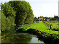 SP1401 : The River Coln, Fairford by Brian Robert Marshall