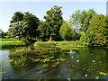 SP1401 : Millpond, Fairford (2) by Brian Robert Marshall