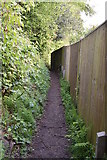 TQ5842 : Footpath to Brokes Wood by N Chadwick