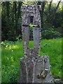 SE9820 : Tree stump carving by Graham Hogg