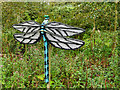 SD4214 : Lego™ Sculpture Trail at Martin Mere - Emily the Emperor Dragonfly by David Dixon