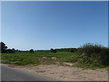 TM0235 : Constable, that's a Gainsborough: field just outside Thorington Street by Basher Eyre