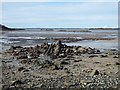 NX5750 : Shoreline at Isles Mouth at low tide by Oliver Dixon