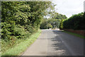 NZ2116 : Minor road near Carlbury Crossing by Ian S