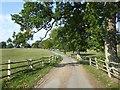 TQ4637 : The road to Bassett's Manor by Marathon