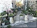 SW4726 : Flowery courtyard garden by Marika Reinholds