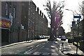 TQ2278 : Cromwell Avenue by N Chadwick