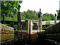 SJ9065 : In Bosley Lock No 10 in Cheshire by Roger  Kidd