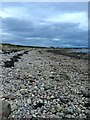 NH7753 : Moray Firth Foreshore by jeff collins