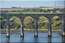 NT9953 : Berwick-Upon-Tweed : Royal Border Bridge by Lewis Clarke