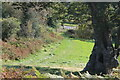 ST1395 : Field footpath down to Parc Penallta by M J Roscoe