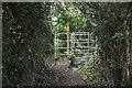 TQ5641 : Kissing gate, Tunbridge Wells Circular Walk by N Chadwick