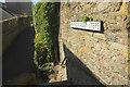 SX8751 : Mount Flagon Steps, Dartmouth by Derek Harper