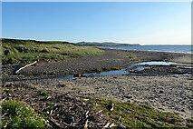 NX0985 : Beach and Burn by Anne Burgess