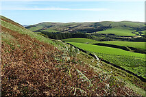 NX1894 : View from Byne Hill by Anne Burgess