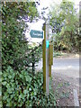 TL9948 : Footpath signpost off Nedging Road by Geographer