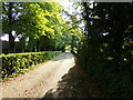 TL9948 : Footpath to the B1115 Hadleigh Road by Geographer