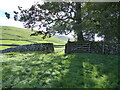 SE0062 : Dry stone wall and gate near Waddy Plantation by Chris Holifield