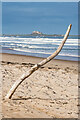 NU1438 : Branch on the beach by Ian Capper