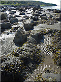 NX1189 : Sand Ripples by Anne Burgess