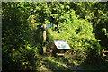 SX8652 : Junction on Dart Valley Trail by Derek Harper