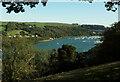 SX8852 : River Dart at Higher Ferry by Derek Harper