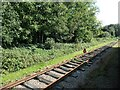 SK5612 : Stop before the end of the line, Swithland sidings by Christine Johnstone