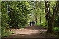 SE2954 : Harrogate Link Path by N Chadwick