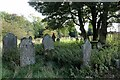 NY8548 : Graveyard, St Peter's Church by Andrew Curtis
