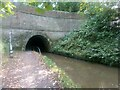 SJ4134 : Western portal, Ellesmere Tunnel, on the Llangollen Canal by Christopher Hilton