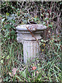 ST8686 : Old water pump at entrance to Easton Town Farm by Vieve Forward