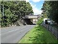 NZ2453 : Pelton Bridge by Adrian Taylor