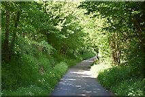 TQ5944 : Footpath heading north by N Chadwick