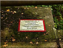 SK5852 : Bridge in Sansom Wood – 2 by Alan Murray-Rust