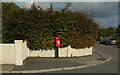 SX9355 : Postbox, Brixham by Derek Harper