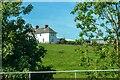 NZ3129 : Bradbury and the Isle : Grassy Field by Lewis Clarke