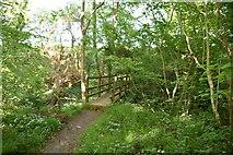 TQ6245 : Tunbridge Wells Circular Walk by N Chadwick