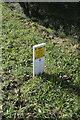 TF4173 : Pipeline marker by Bob Harvey