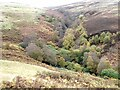 NT9517 : Valley of the Linhope Burn by Oliver Dixon