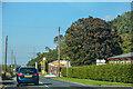 NU0026 : Haugh Head : A697 by Lewis Clarke