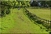 TQ6244 : Tunbridge Wells Circular Walk by N Chadwick