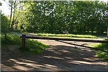 TQ6143 : RSPB Tudeley Woods Car park by N Chadwick