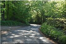 TQ6143 : Dislingbury Rd by N Chadwick