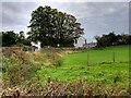 SD7707 : Scotson Fold Farm by David Dixon
